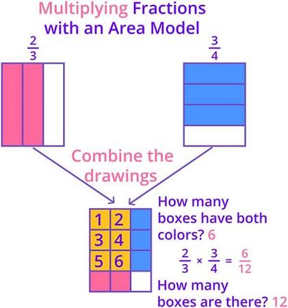 Multiplying fraction using area model