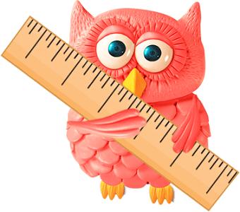 Owl holding ruler