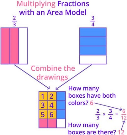 Multiplying fraction with area model