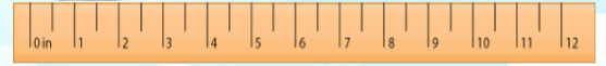 12-inch ruler