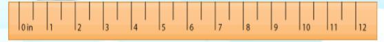 12 inch ruler
