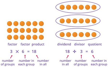 Repeated addition to learn multiplication